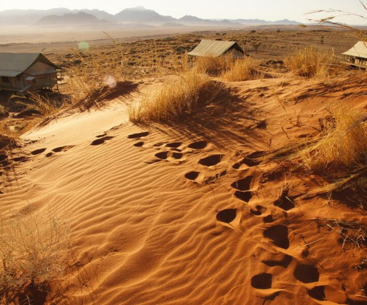 Namibia Namib Rand Naukluftberge Walvis Bay Swakopmund
