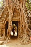 Kambodscha Siem Reap Angkor