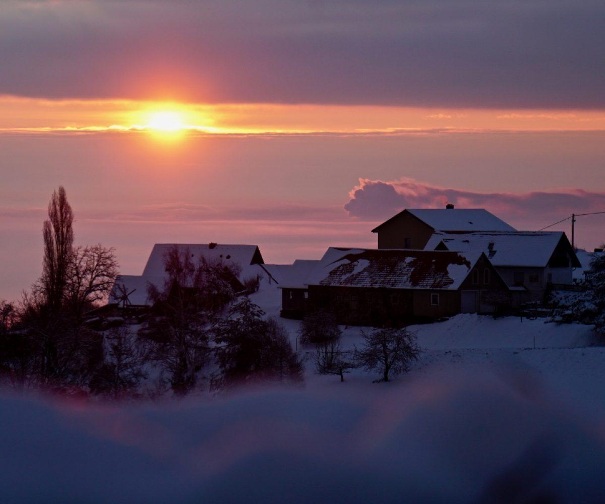 Sausal sunrise again